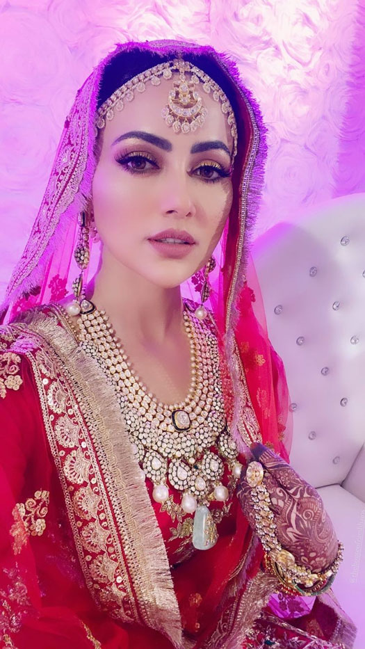 Sana Khan Changes Her Name On Instagram, Check Out Unseen Wedding Pics