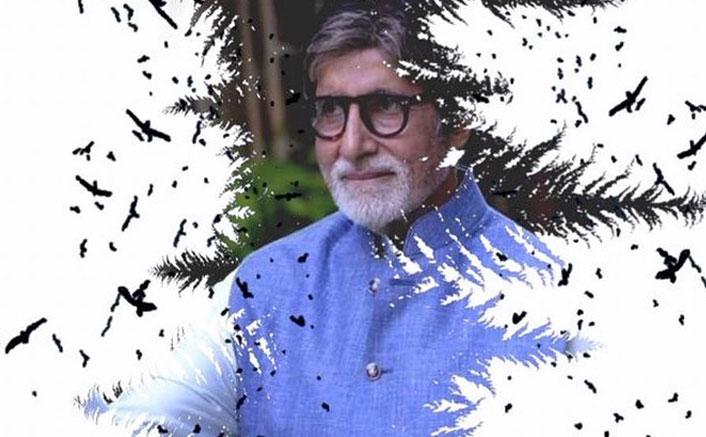 Amitabh Bachchan Gets Nostalgic About Christmas Midnight Mass In Kolkata Church