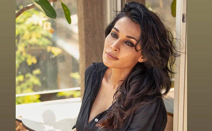 Flora Saini: 'I Am Bored Of Looking Sensual On Screen'