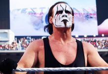 Game-Plan Of How Sting Will Be Used In AEW