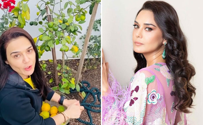 Preity Zinta is back to 'ghar ki kheti'