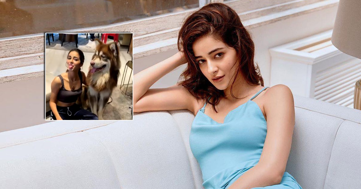 Liger: Ananya Panday Has Got A New Fan In Charmme Kaur's Doggo & The Video Is Proof!
