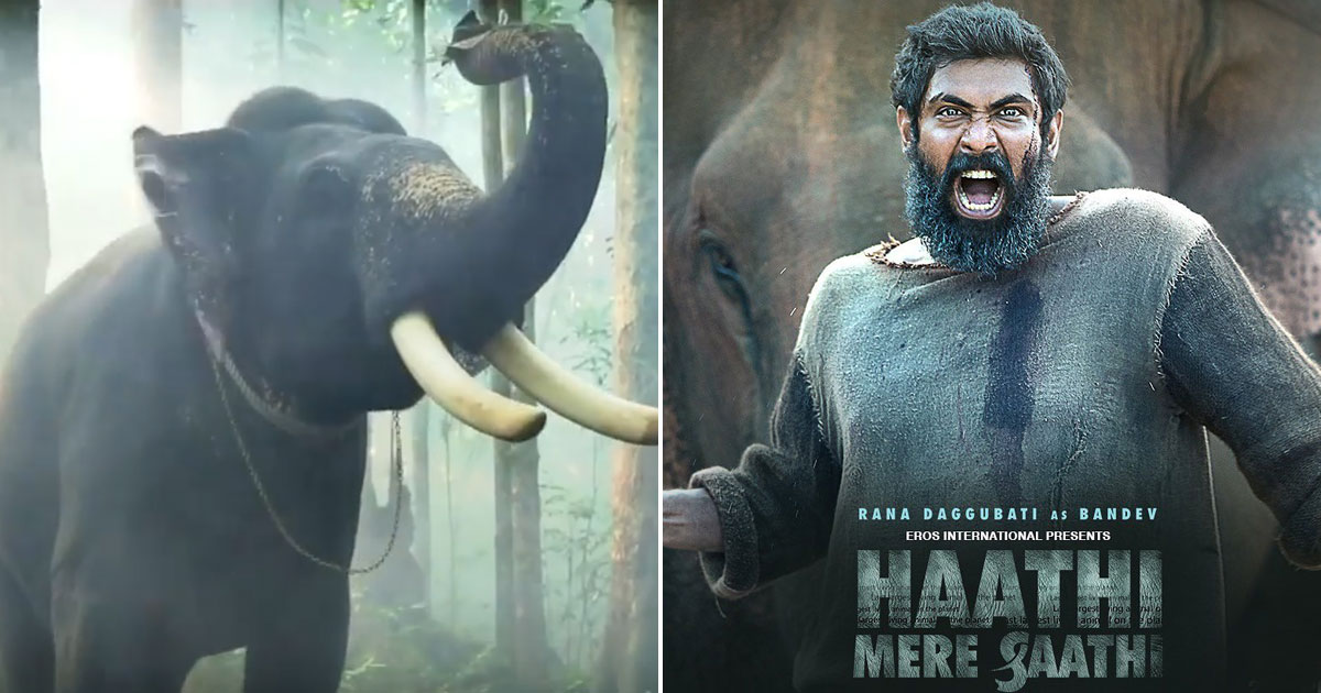 Guess Who Was The 'Busiest' Star In Rana Daggubati's 'Haathi Mere Saathi'!