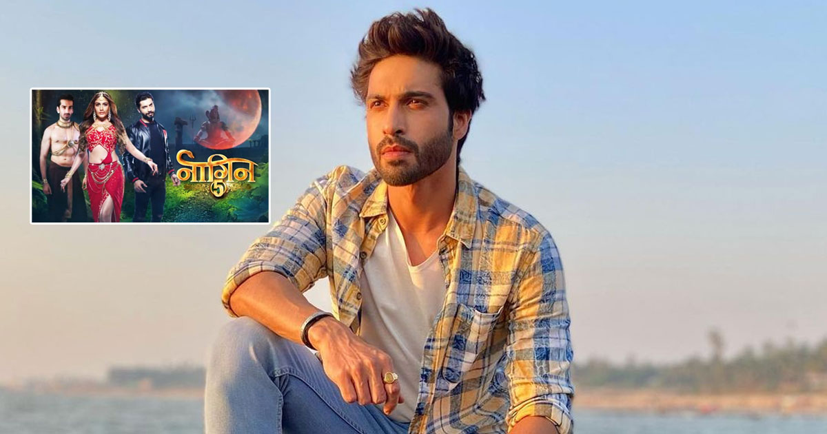 "Vijayendra Kumeria On Naagin 4's Abrupt End: ""I Did Feel Bad For A Day…"""