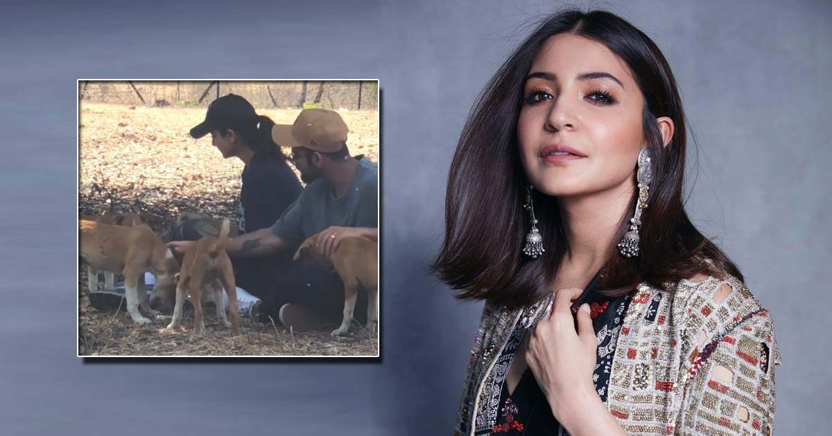 Anushka Sharma's 'Priceless 2020 Moments' Are Filled With Dogs, Watch To Give A 'Pawsitive' Start To Your Weekend - Check Out