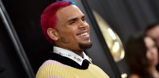 Chris Brown sued by housekeeper after pet dog attack