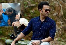 'Daada' Prithviraj posts a pic with pet dog Zorro