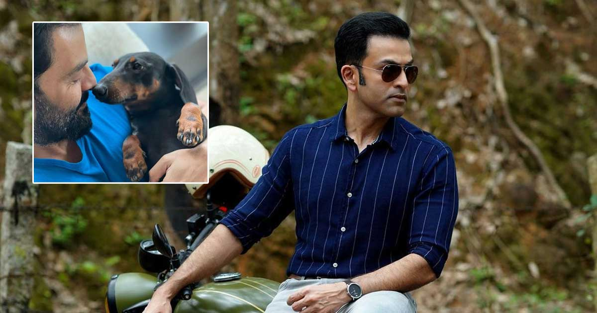 Prithviraj Sukumaran's Picture With His Dog Will Tempt You To Adopt A Pet ASAP!