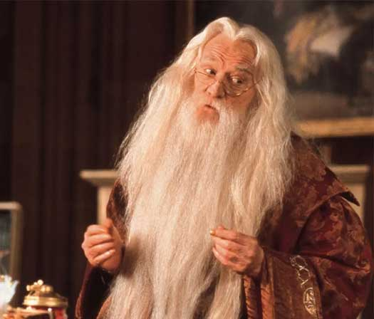 Richard Harris Played Albus Dumbledore In The HP Movies