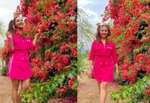 Divyanka Tripathi calls herself a 'seasonal flower'