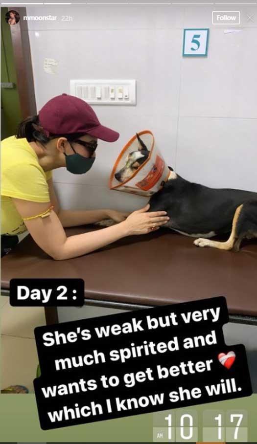 Munmun Dutta Saves A Dog