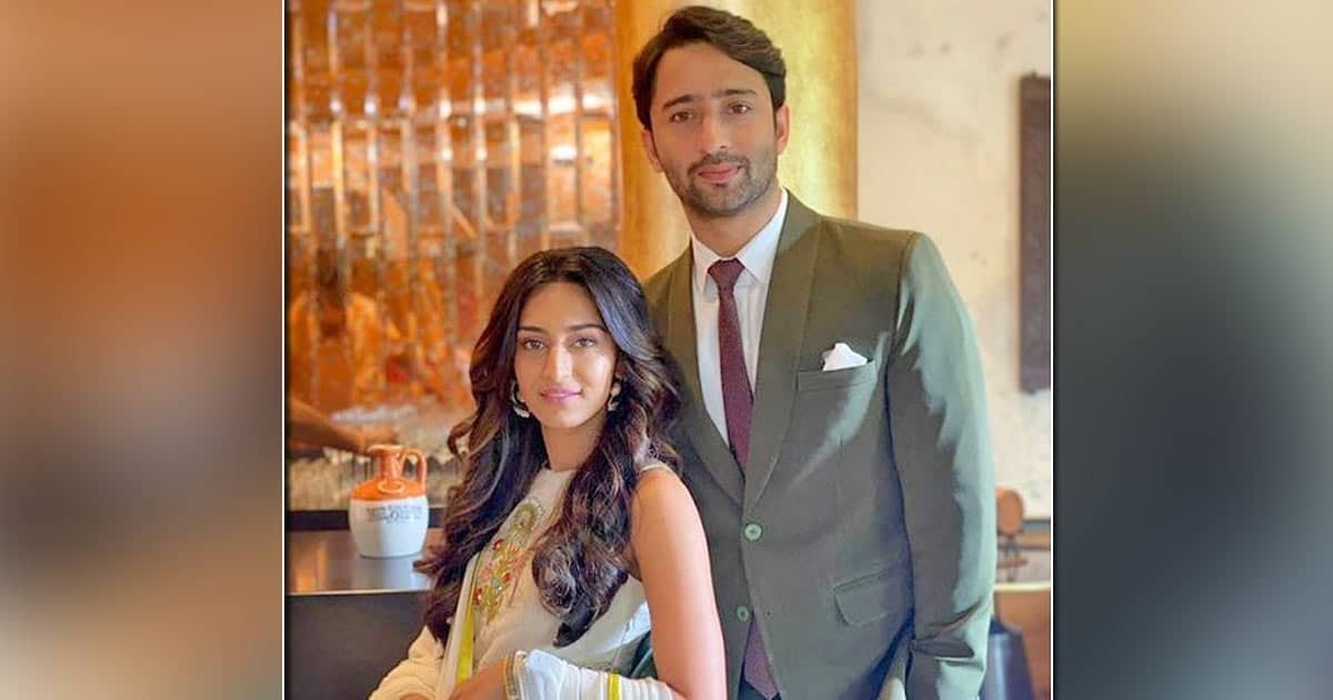 Erica Fernandes & Shaheer Sheikh Face Issues In Their Friendship?