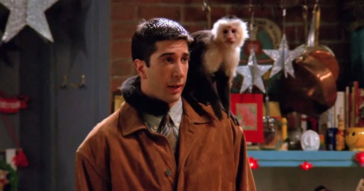 Friends: Monkey Trainer Calls David Schwimmer' Despicable' Over His Remarks Of Marcel Messing The Shoot During Filming