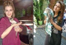 Raveena posts pics of rescued animals: 'My house has become like Dr Dolittle's home'
