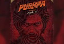 Big Announcement: Pushpa: The Rise is all set to have a Christmas 2021 release!