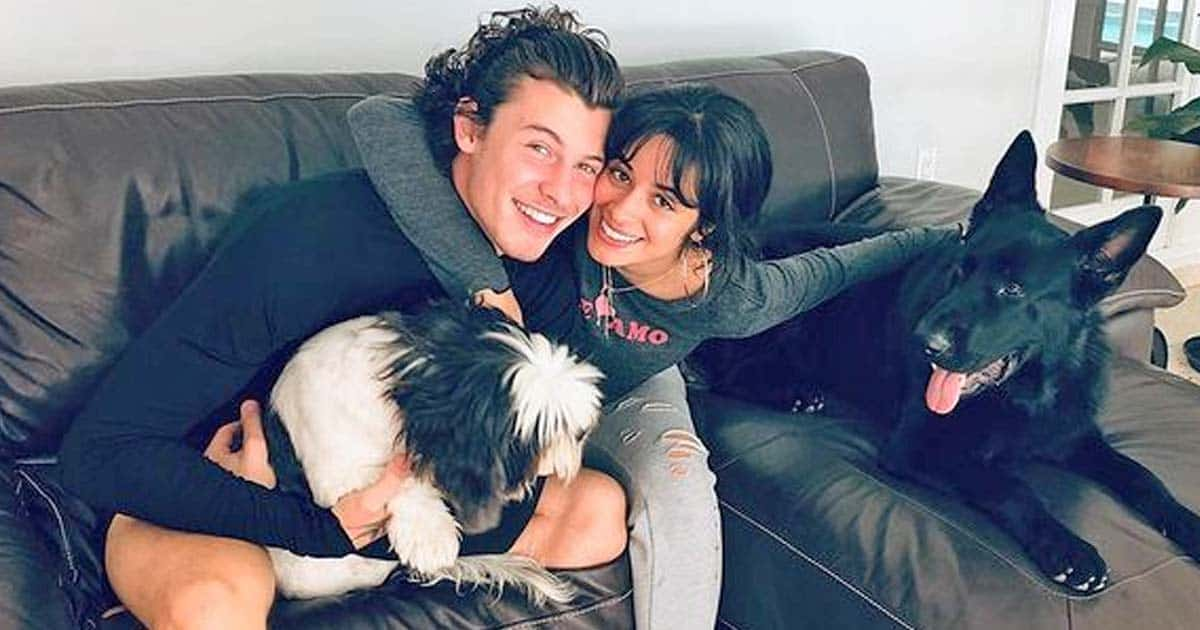 Camila Cabello lucky to have 'nurturing partner' like Shawn Mendes