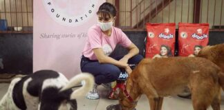 Jacqueline gives angora the cold shoulder in PETA India campaign