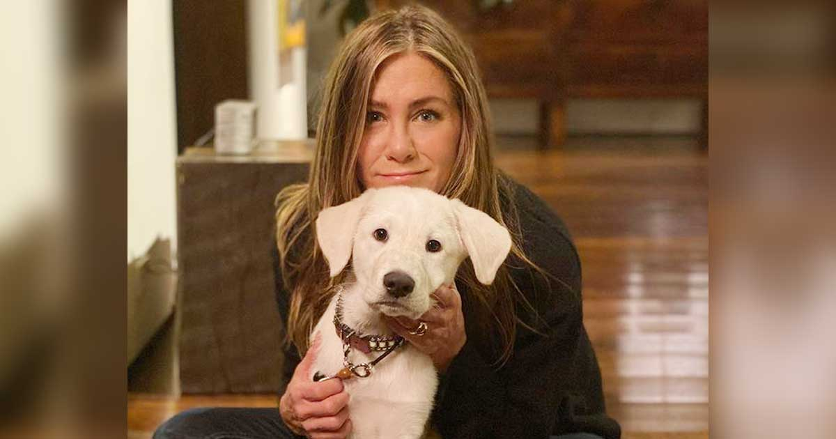 Jennifer Aniston launches vegan hair care line