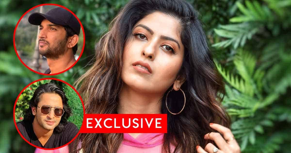 """Abhidnya Bhave Gets Vocal On Shaheer Shiekh Being Compared To Sushant Singh Rajput: """"It Is Very Unfair..."""""""