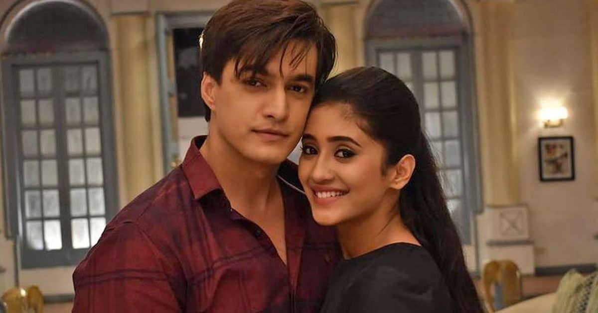After Mohsin Khan & Shivangi Joshi's Exit, Yeh Rishta Kya Kehlata Hai Will See Old Cast Returning To The Show?