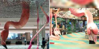 Is Bigg Boss 15's Set Copied From Matthew Mazzotta's Flamingo Sculpture? Set Designer Faces Plagiarism Allegations