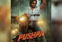 'Pushpa: The Rise' track 'Srivalli' out in Hindi, four southern languages