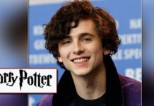 Timothée Chalamet Makes Slytherin Trend After Wearing A Harry Potter Sweater For An Interview